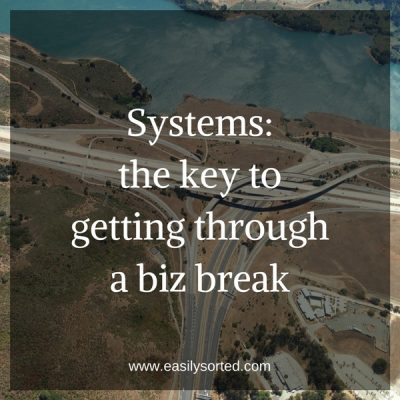 Systems: the key to getting through a biz break